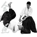 New Aikido Beginning Class for adults!